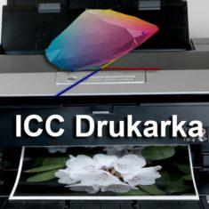 Profilowanie drukarka