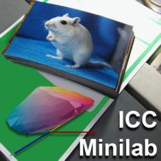 Profilowanie minilab