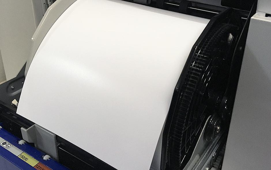 Rolka papieru w drukarce.
